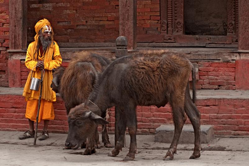 Kathmandu Durbar Square Sadu