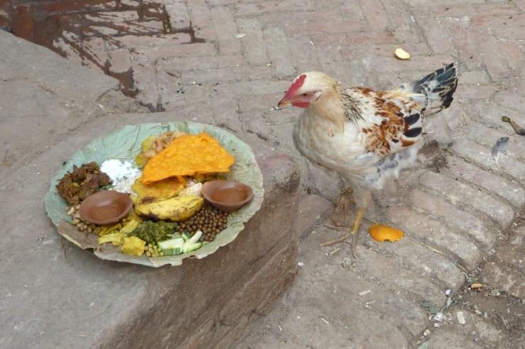 Nepal Opfergaben