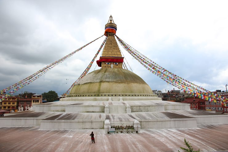 Nepal Boudha Bravebird