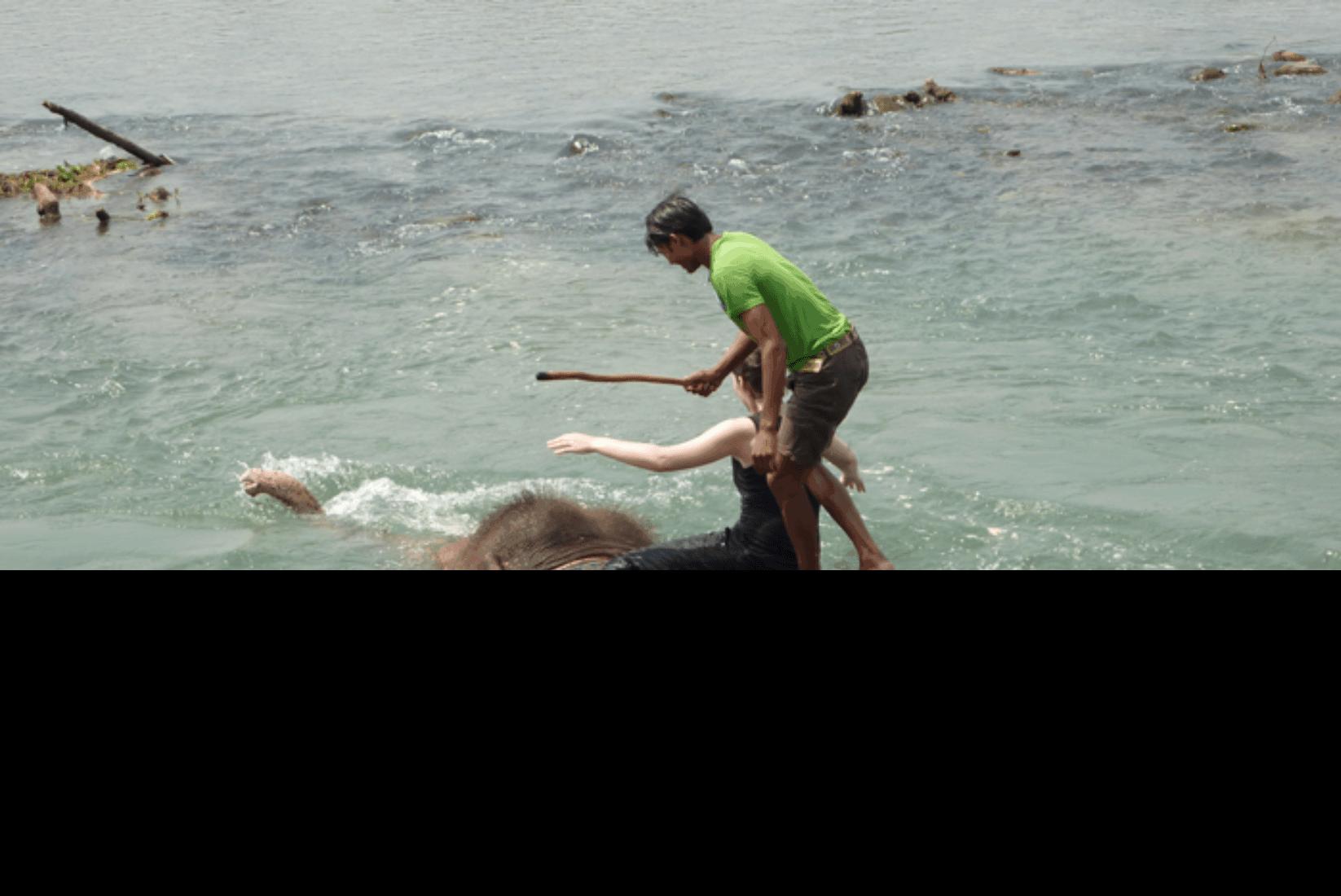 Chitwan Schwimmen mit Elefanten