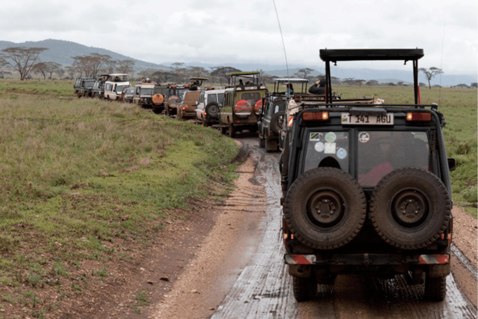 Ngorongoro Krater Reiseblog
