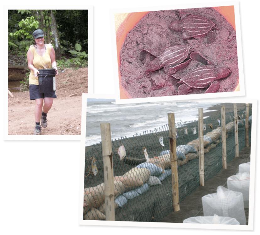 Costa Rica Hilfsprojekt Tiere