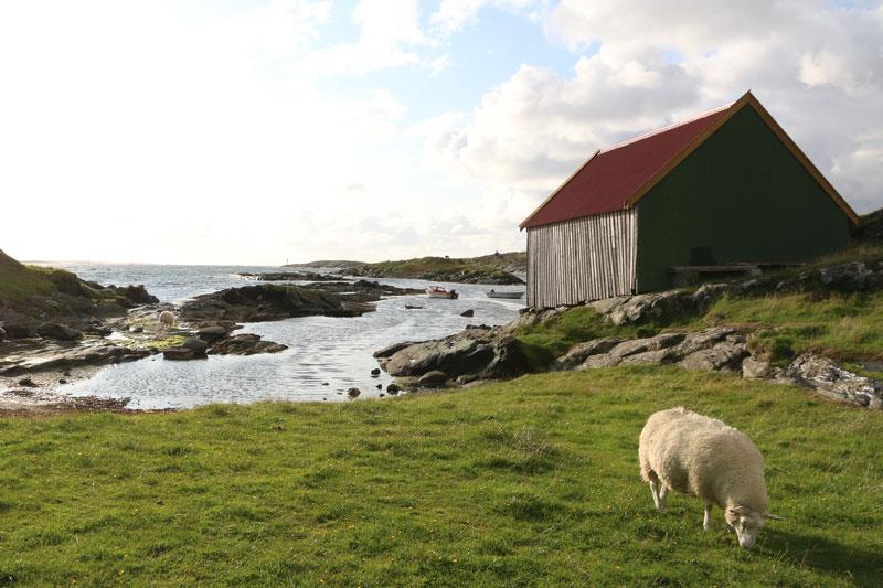 Norwegen Natur - Rundreise Roadtrip - Reiseblog Bravebird