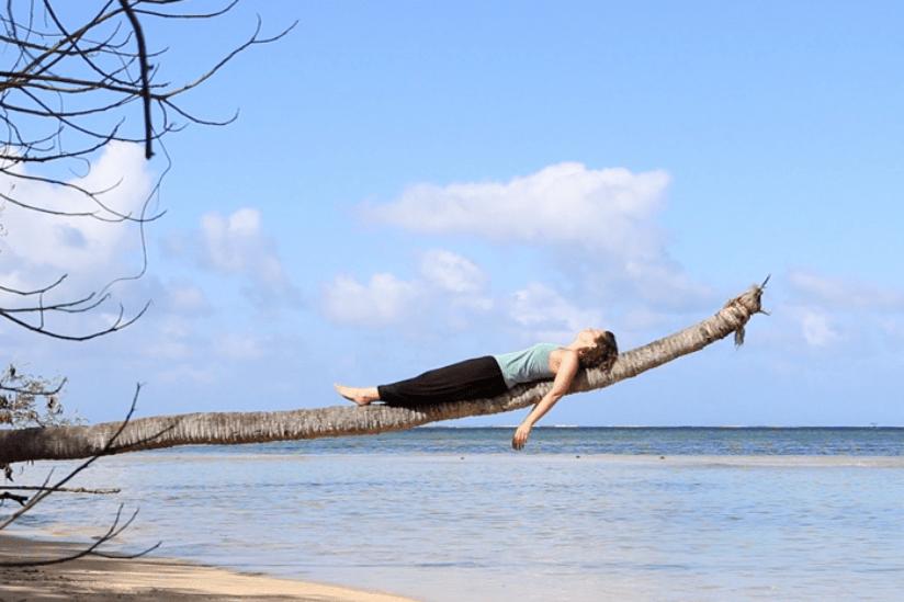 Freiheit Palme Fidschi