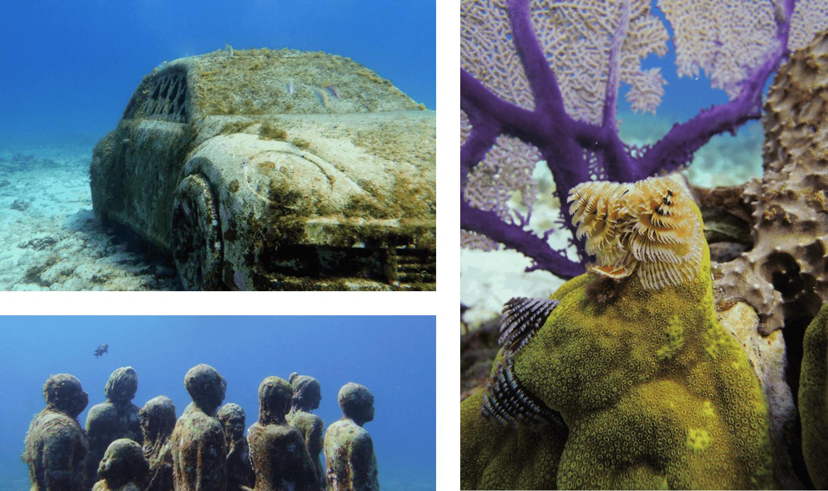 Cancun Musa Unterwasser