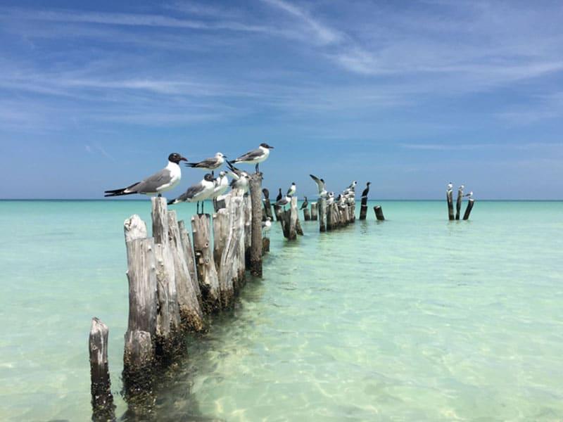 Karibik-Insel Holbox Mexiko Yucatan - Reiseblog Bravebird