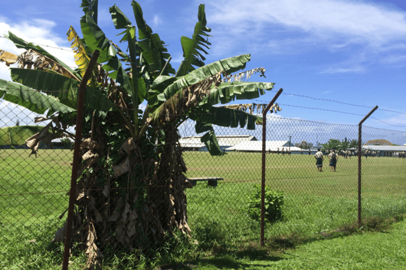 Samoa Schule