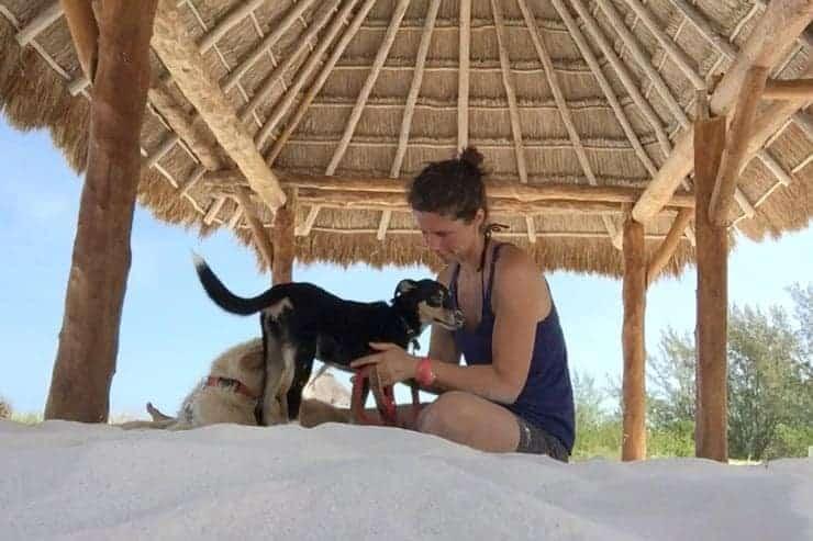 In Mexiko auf den Hund gekommen