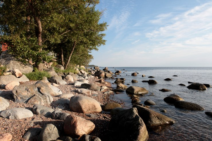 Küste im Norden Estlands