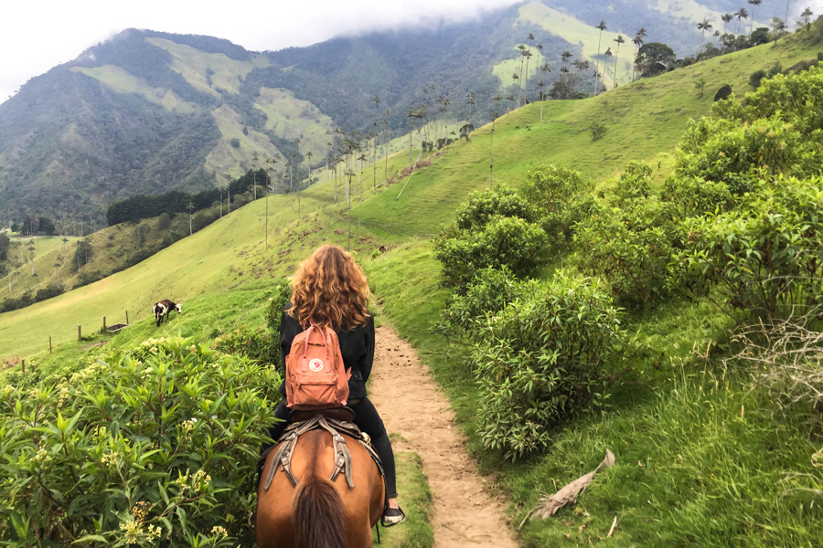 Kolumbien Rundreise - Die besten Tipps - BRAVEBIRD
