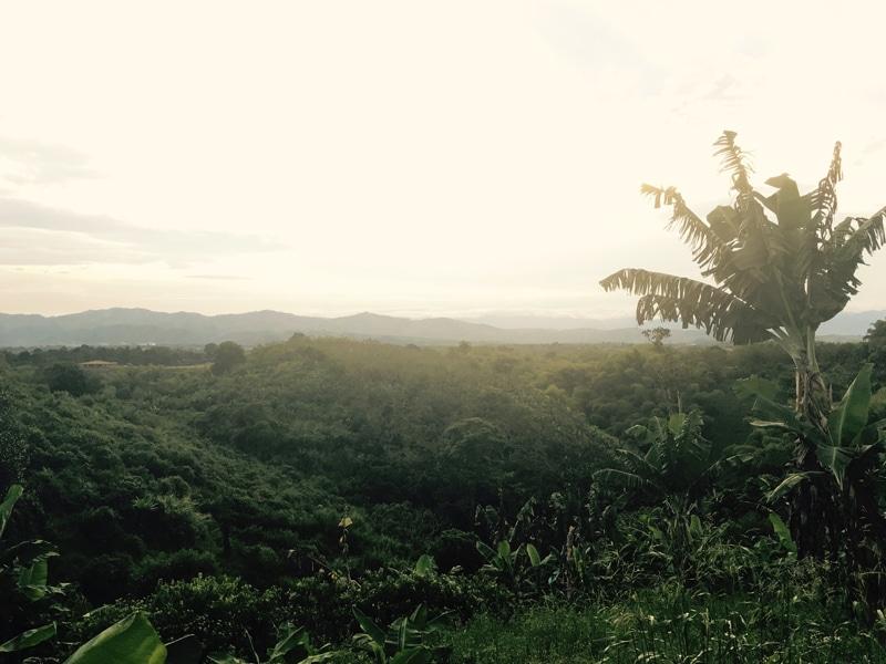 Kaffeeregion Kolumbien - Rundreise Backpacking - Reiseblog Bravebird