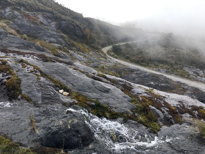Rundreise durch Kolumbien - Parque los Nevados - Reiseblog Bravebird