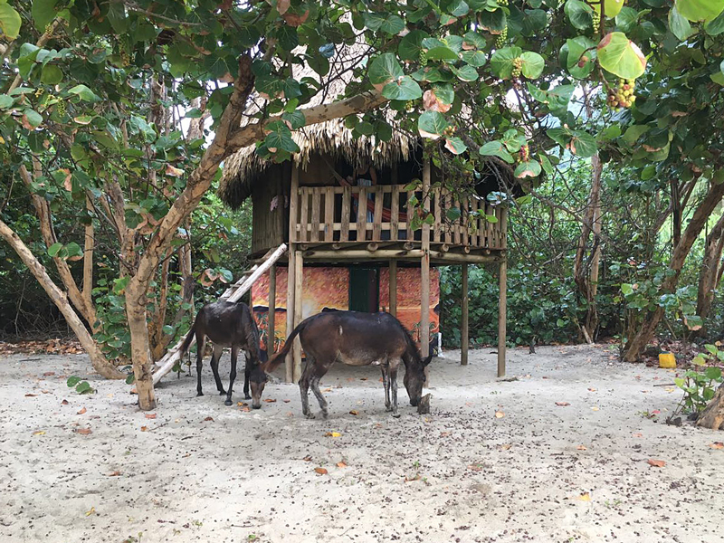 Tayrona Nationalpark - Hotel - Reiseblog BRAVEBIRD
