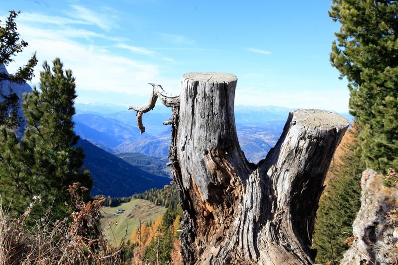 Seiser Alm Wanderung - Südtirol Rundreise - Reiseblog Bravebird