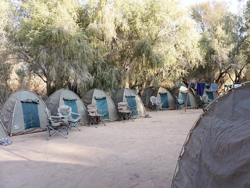 Desert Knight Adventure - Südafrika - Reiseblog Bravebird