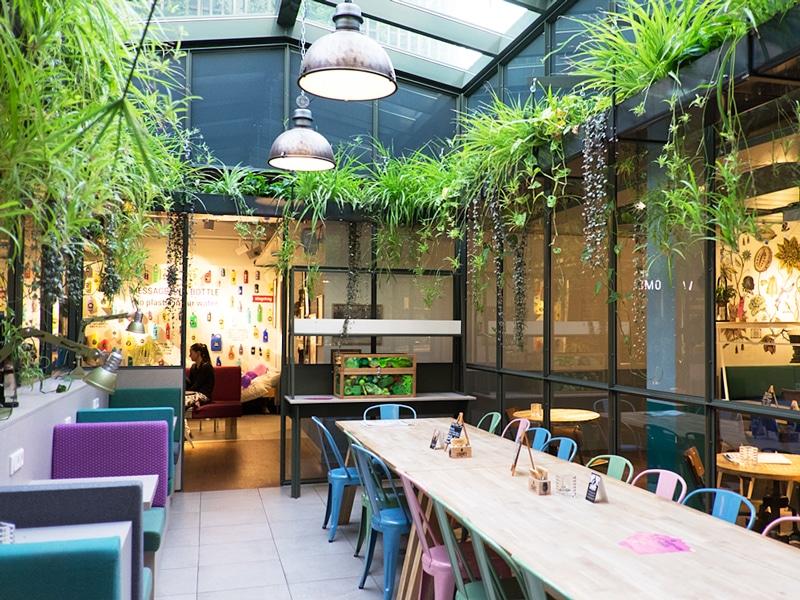 Stayokay Hostel Vondelpark - Reiseblog Bravebird