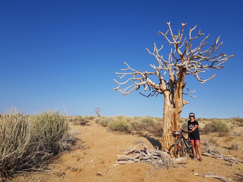 Namibia Mountainbike Tour - Mandy Müller - Reiseblog Bravebird