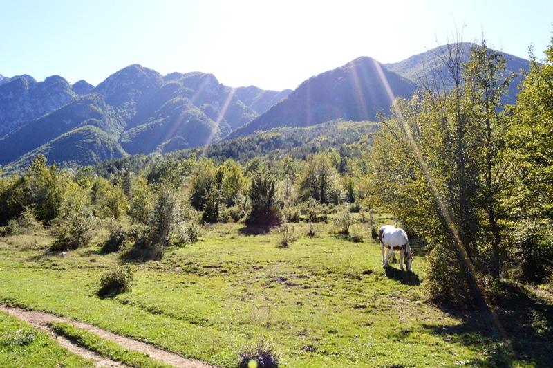 Abruzzen Nationalpark - Rundreise Italien - Reiseblog Bravebird
