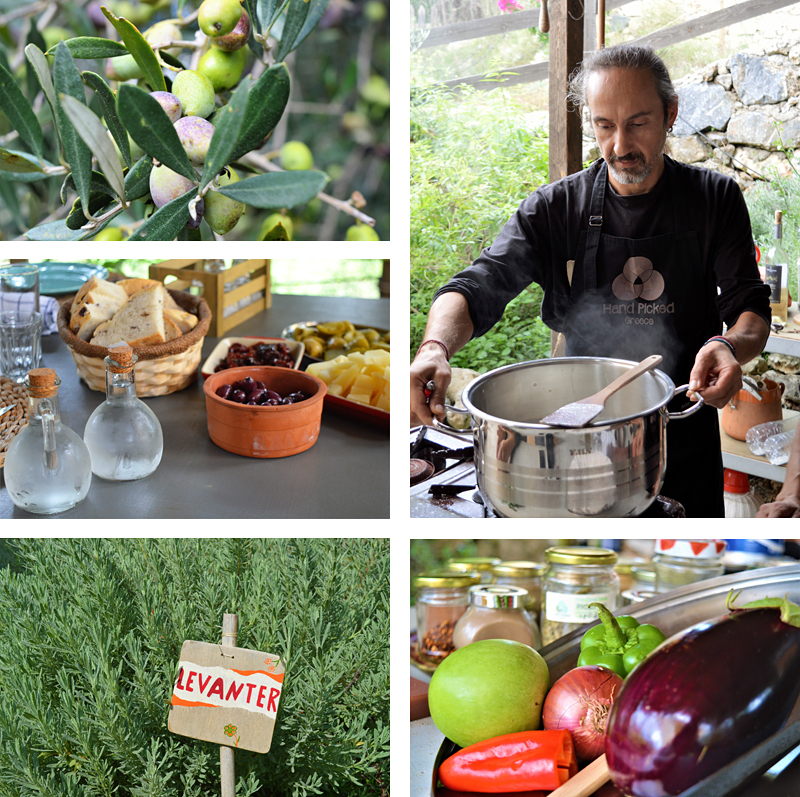 Kreta - The Olive Farm - Reiseblog Bravebird
