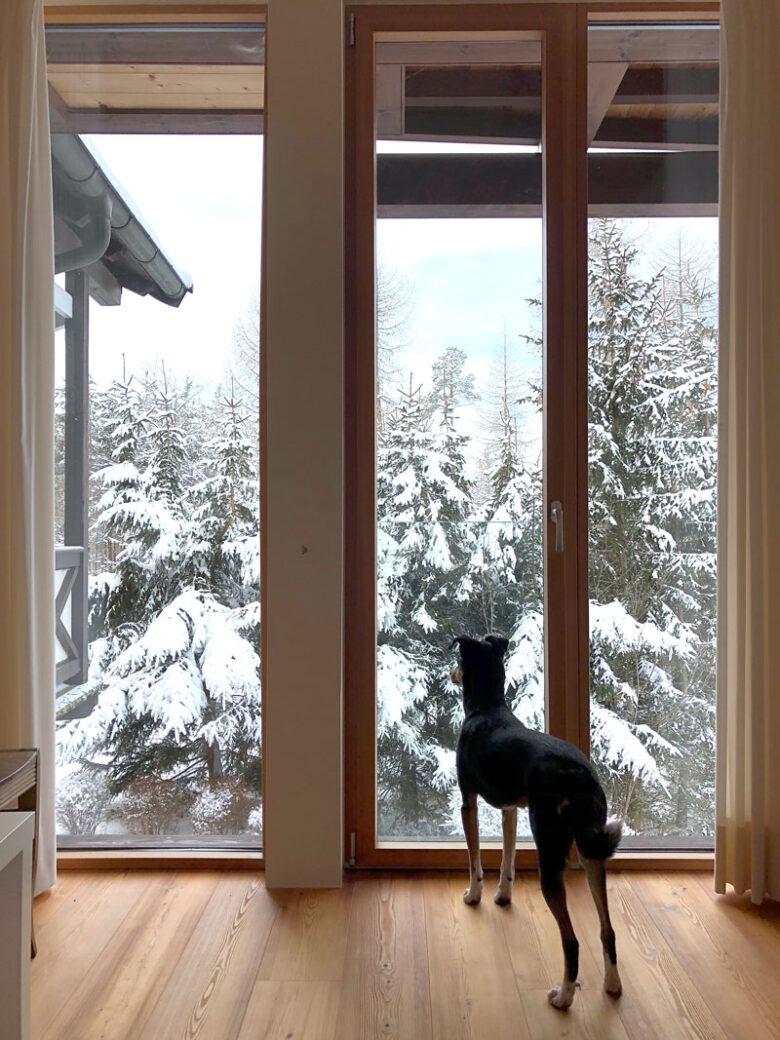 Ferienwohnung in Ritten im Winter - Südtirol - Reiseblog Bravebird