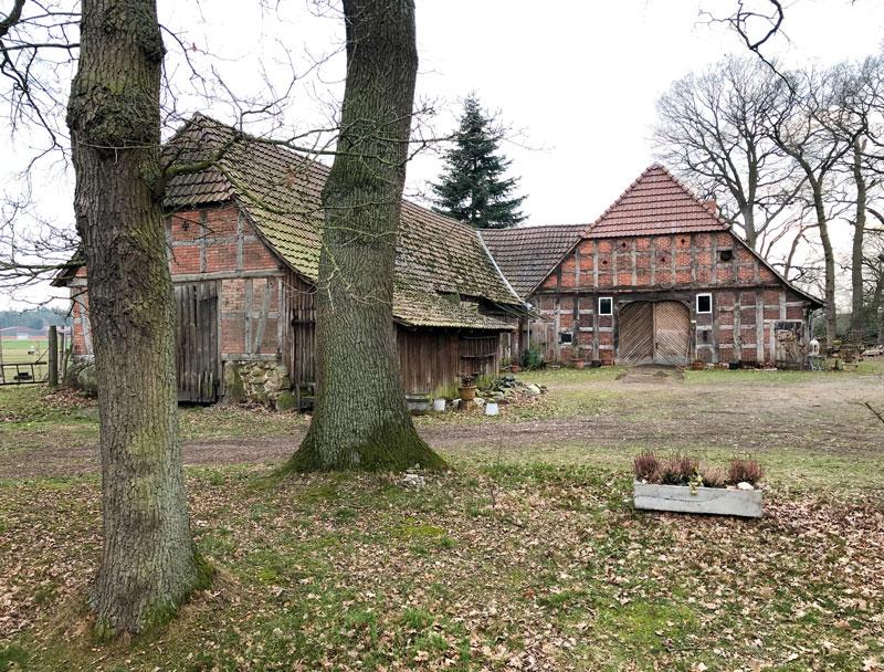 Moorgebiete - Urlaub in Niedersachsen - Reiseblog Bravebird