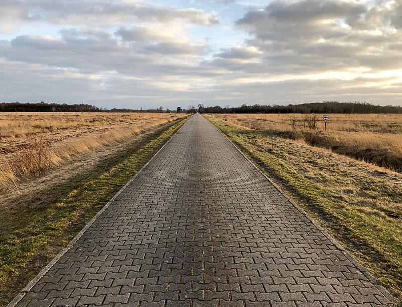 Wandern im Oppenweher Moor - Niedersachsen Diepholz - Reiseblog Bravebird