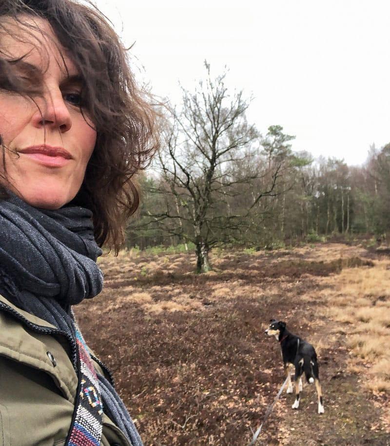 Spaziergang im Moor - Reiseblog Bravebird