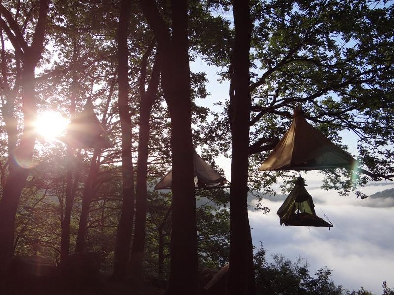 Cloefhaenger Zelten im Wald - Reiseblog Bravebird