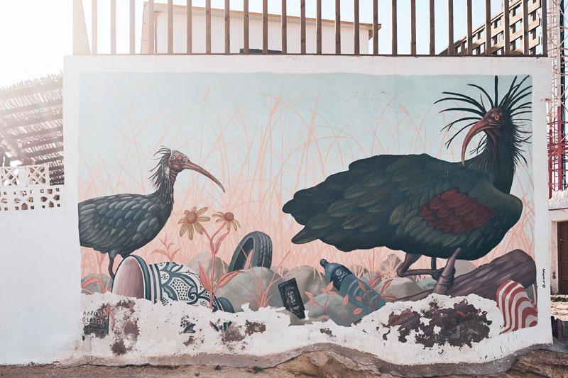 Imsouane Marokko - Insider-Tipps - Reiseblog Bravebird