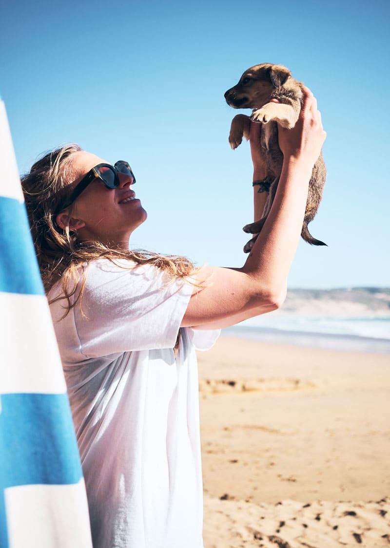 Tafedna Marokko - Strandhunde - Reiseblog Bravebird