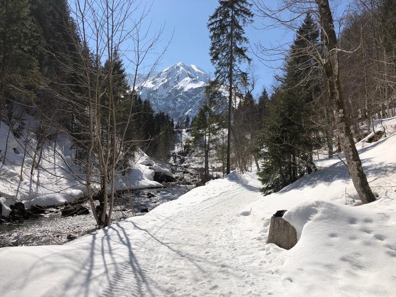 Wanderweg nach Hirschegg - Reiseblog Bravebird