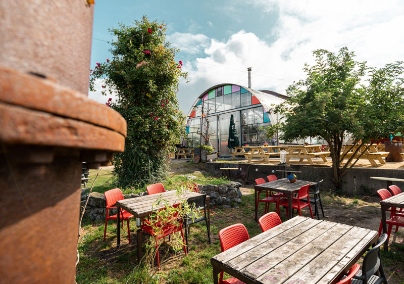 Treibhaus Café Noorderlicht Amsterdam - Reiseblog Bravebird