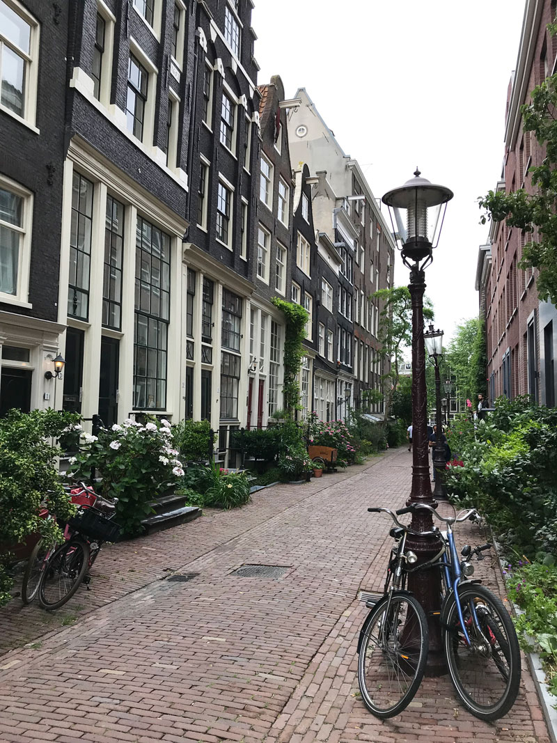 Urban Gardening - Buntes Amsterdam - Reiseblog Bravebird
