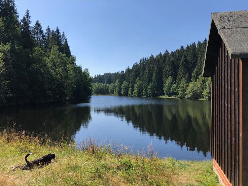 Hüttenteich bei Altenau im Harz - Reiseblog Bravebird