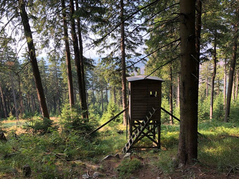 Wurmberg Bergstation - Reiseblog Bravebird