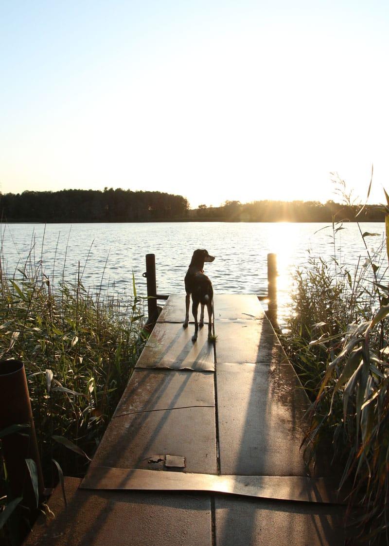 Kölpinsee Usedom bei Stubbenfelde - Reiseblog Bravebird