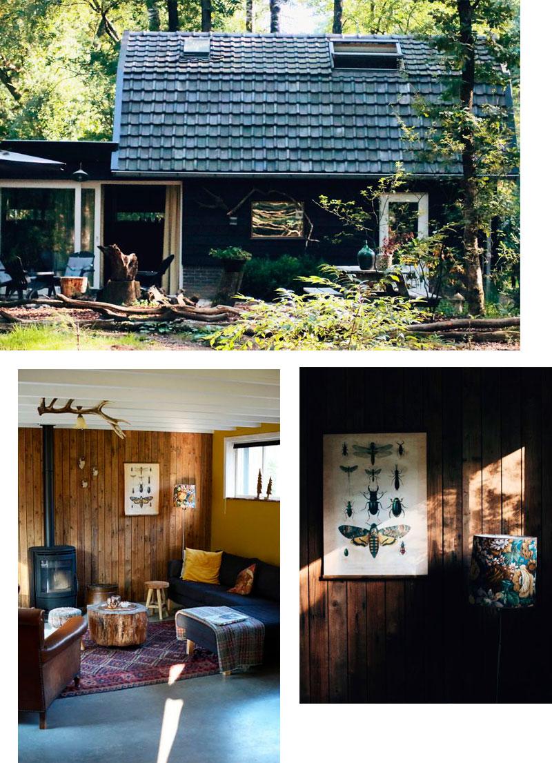 Gemütliches Ferienhaus im Wald - Reiseblog Bravebird