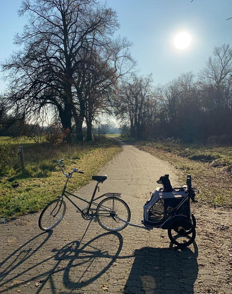 Verreisen mit Fahrrad und Hund mit Hundeanhänger - Reiseblog Bravebird