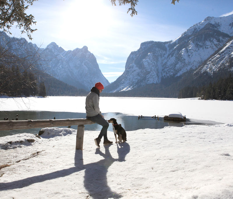 Reisen mit Hund im Winter - Reiseblog Bravebird