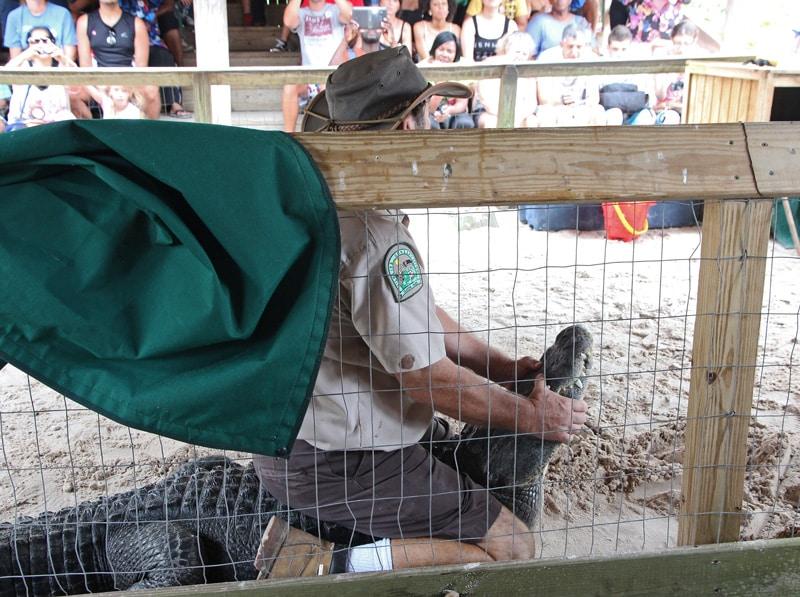 Tierquälerei in Tiershows in den USA - Reiseblog Bravebird