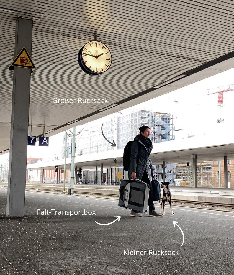 Zugreisen mit Hund - Kosten und Buchungstipps - Reiseblog Bravebird