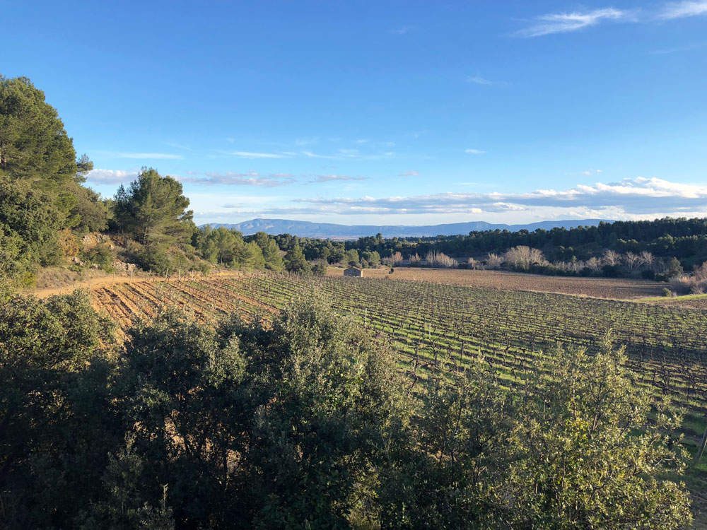 Domaine de Palatz Ferienwohnung in Südfrankreich Languedoc - Reiseblog Bravebird