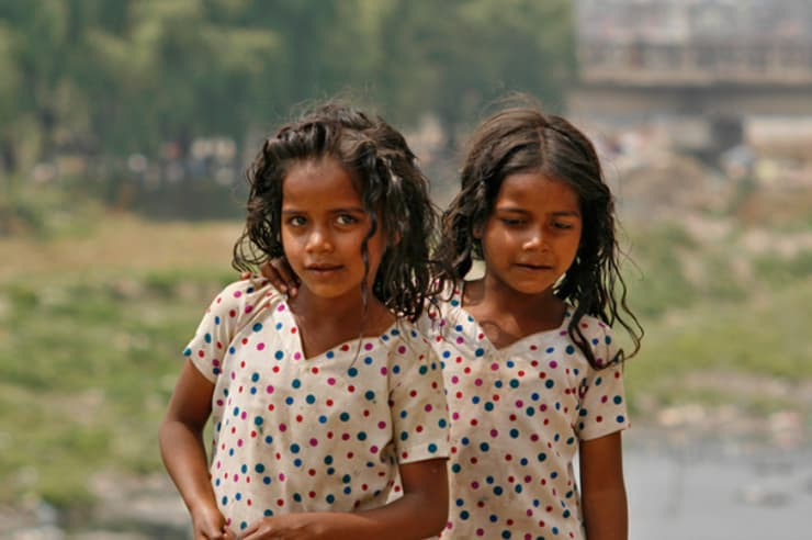 Nepal Zwillinge Bravebird