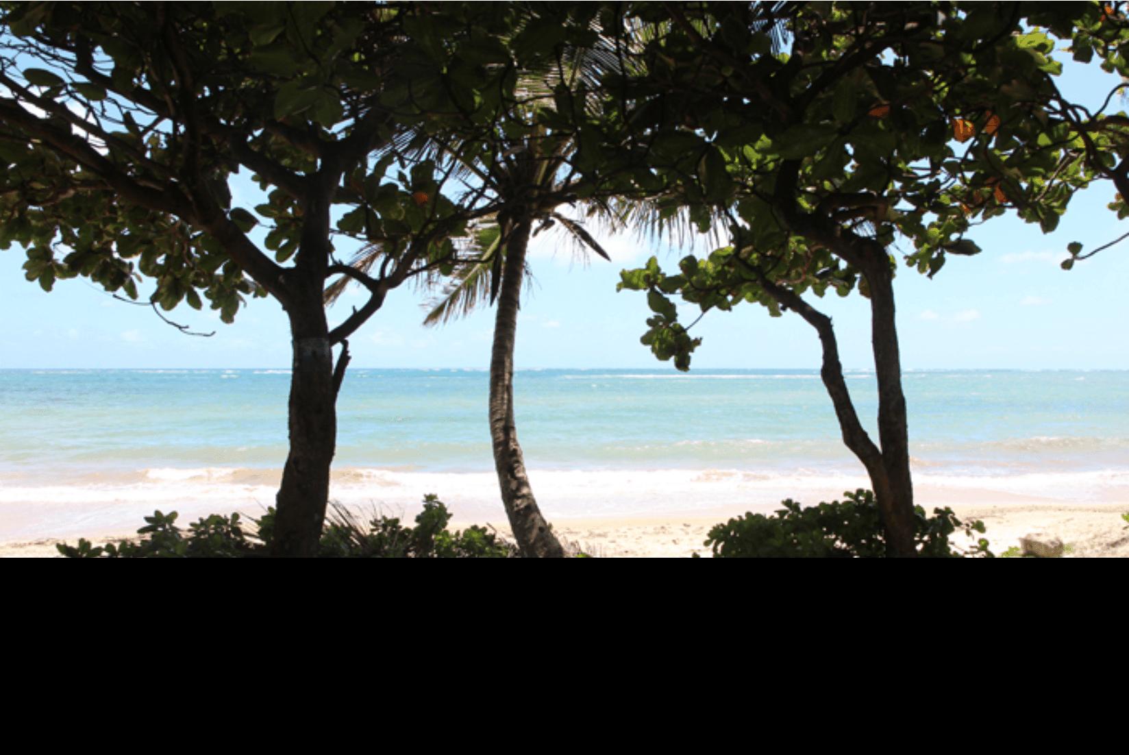 Hawaii Norden Strand