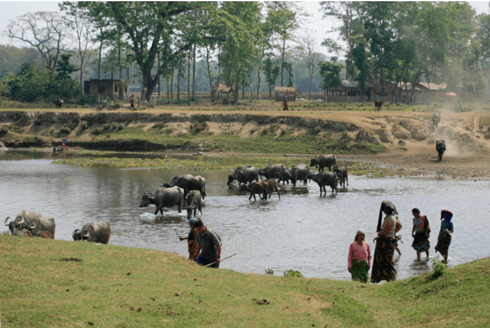 Chitwan Nepal Reise