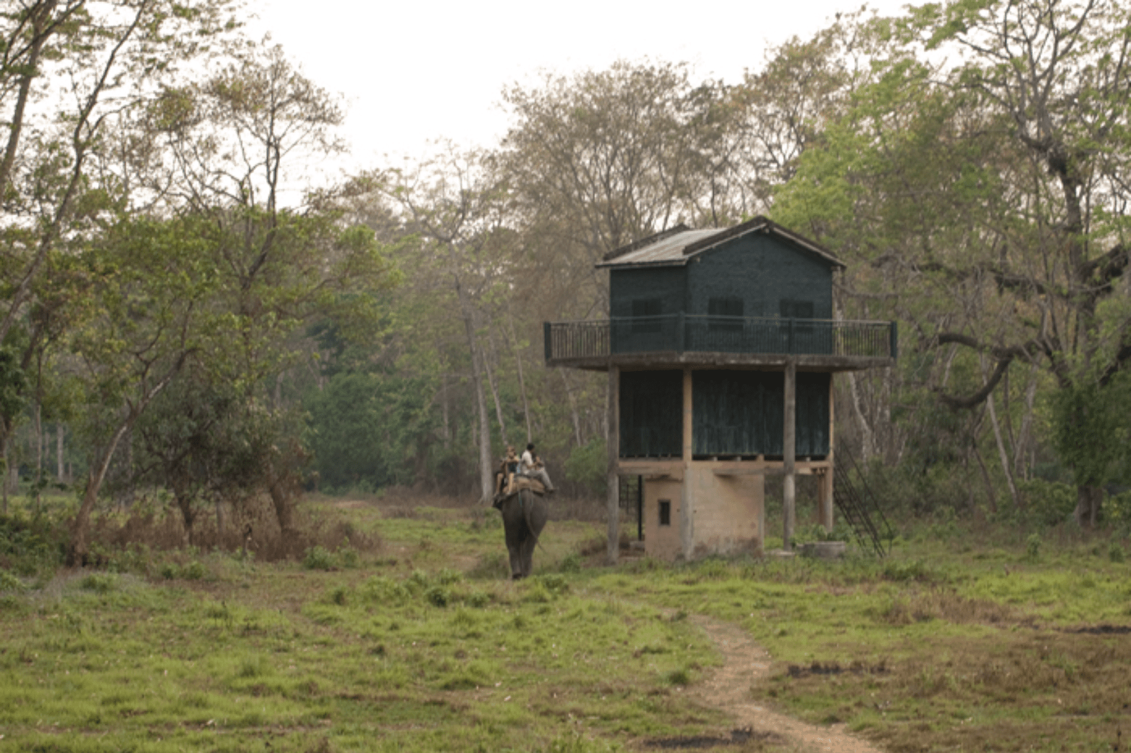 Chitwan Nepal Park