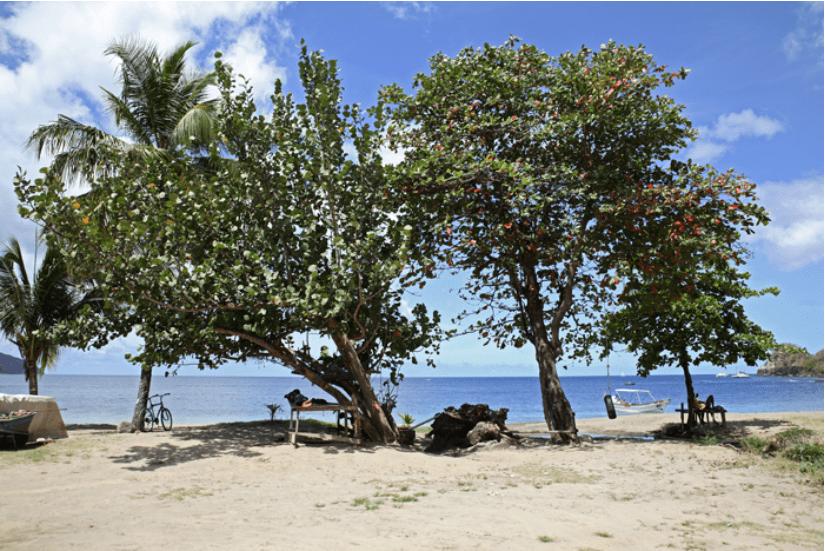 St. Lucia Soufriere Blog