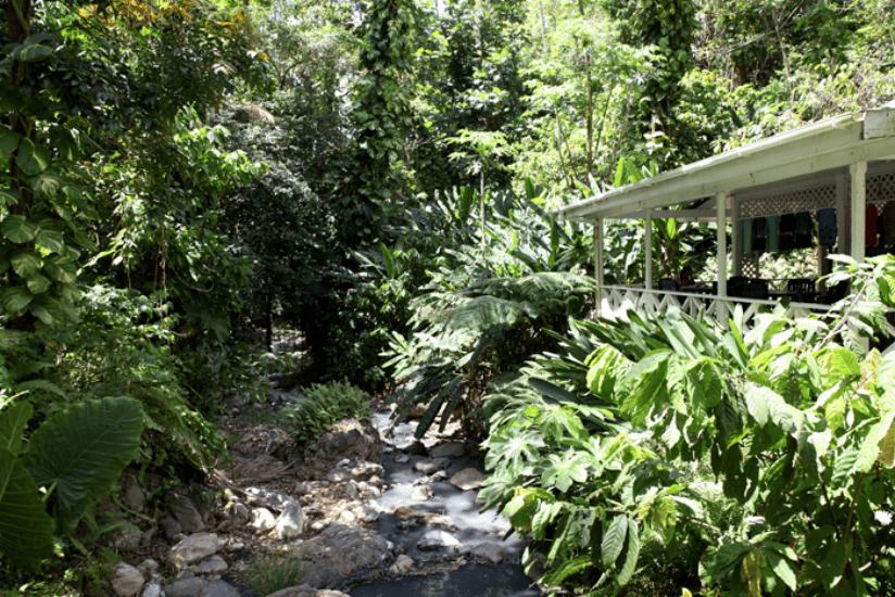 St. Lucia Botanischer Garten