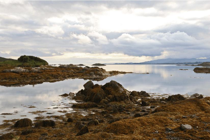 Irland See
