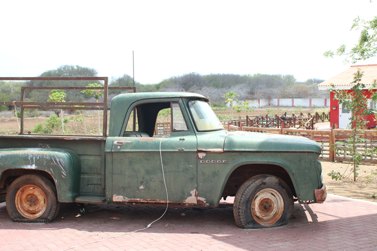 Hofi Cas Cora Truck